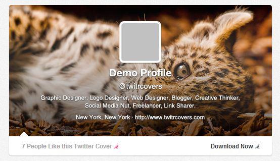 Imágenes para el perfil de Twitter