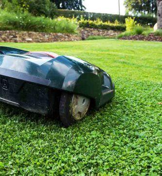 Los 5 mejores robots cortacésped para tu jardín