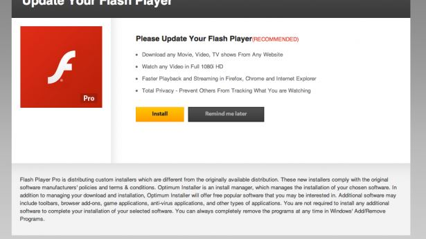 Update your flash player